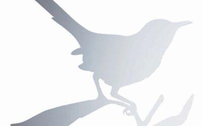 Offerta Specchio Uccello Taylor Bird – Driade