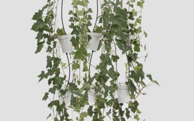 Vasi Per Coltura Idroponica Danese Window garden pendant